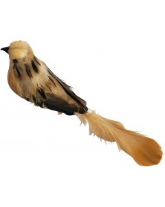 Feather Bird Clip Decoration Amber 20cm